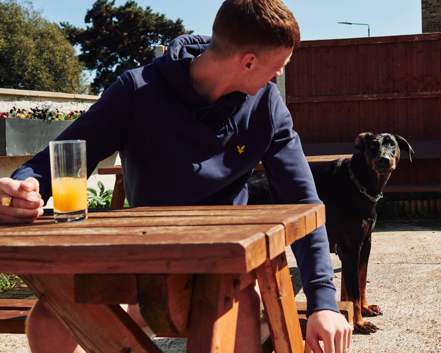 Dog in pub beer garden, by lifestyle photographer Tim Cole
