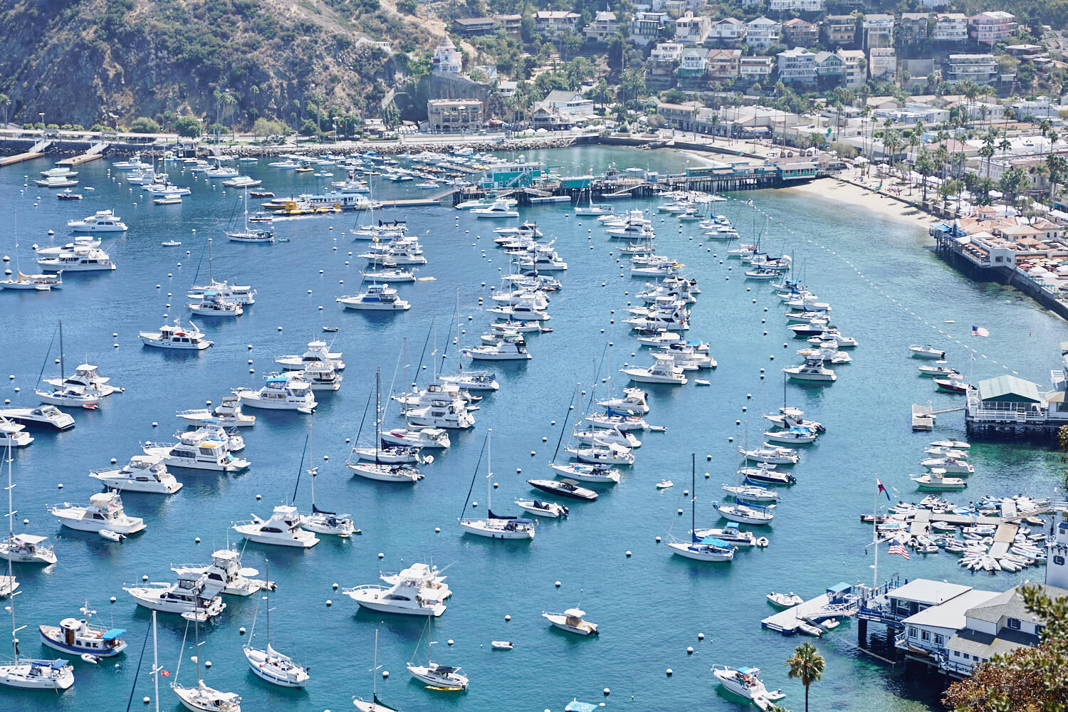 Many small yachts  by lifestyle photographer Tim Cole